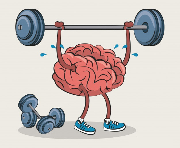 мышца внимательности