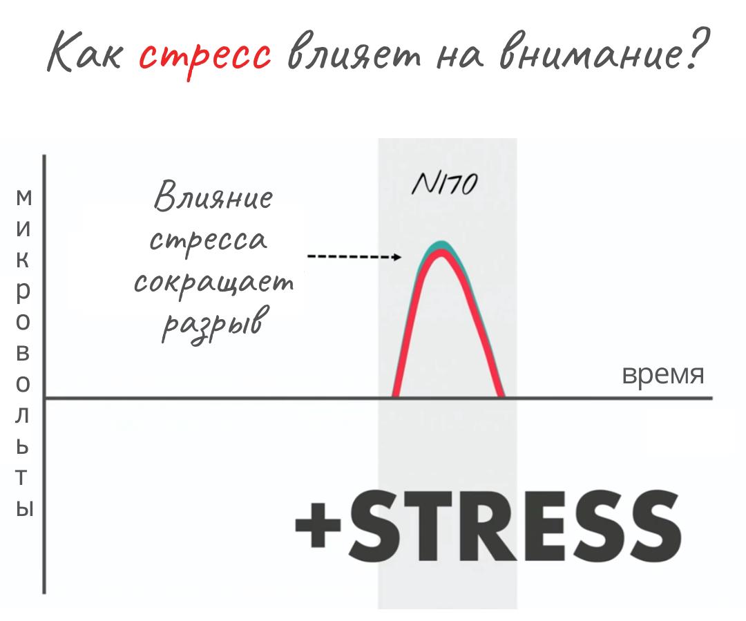 внимание и стресс